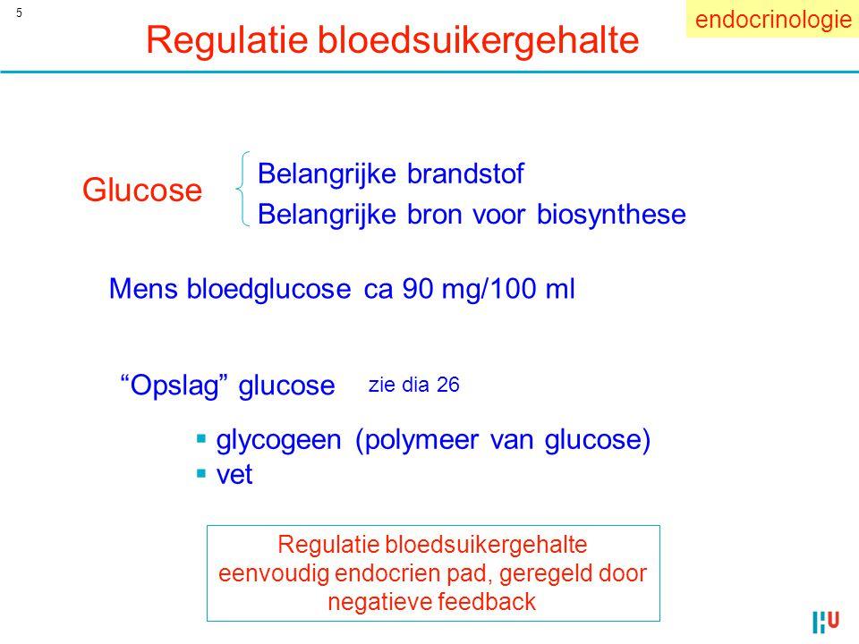 5 Regulatie bloedsuikergehalte Mens bloedglucose ca 90 mg/100 ml Glucose Belangrijke brandstof Belangrijke bron voor biosynthese endocrinologie Regula