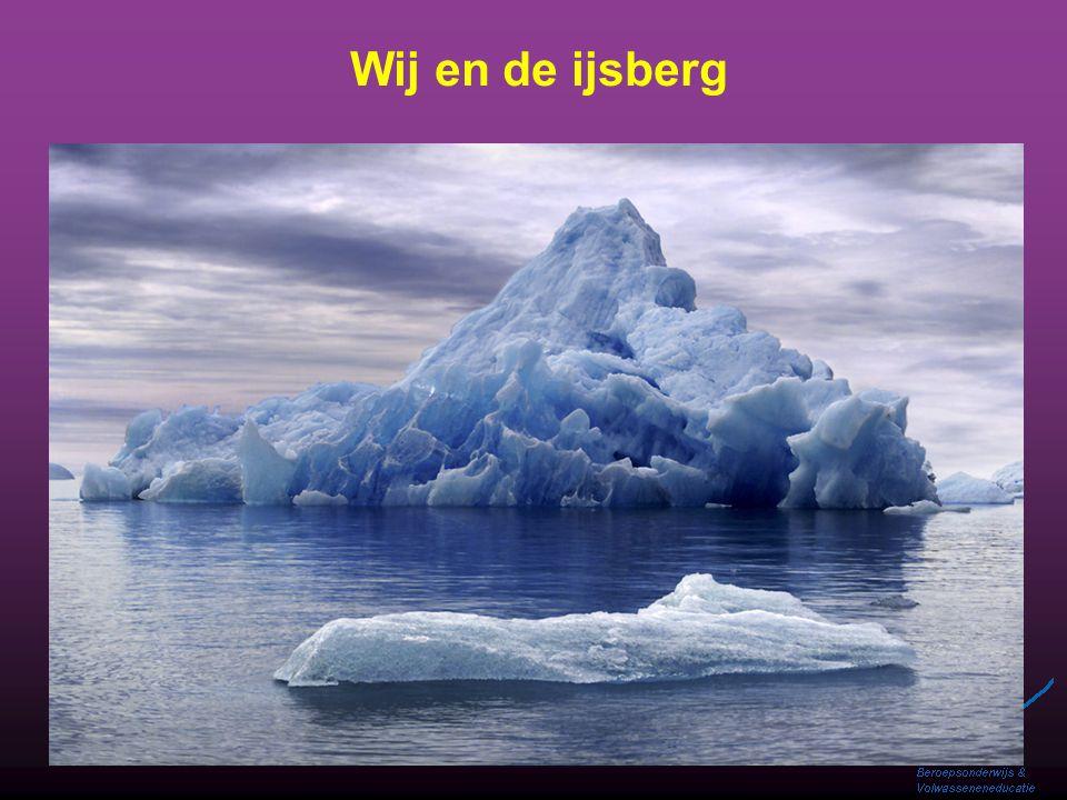 Wij en de ijsberg