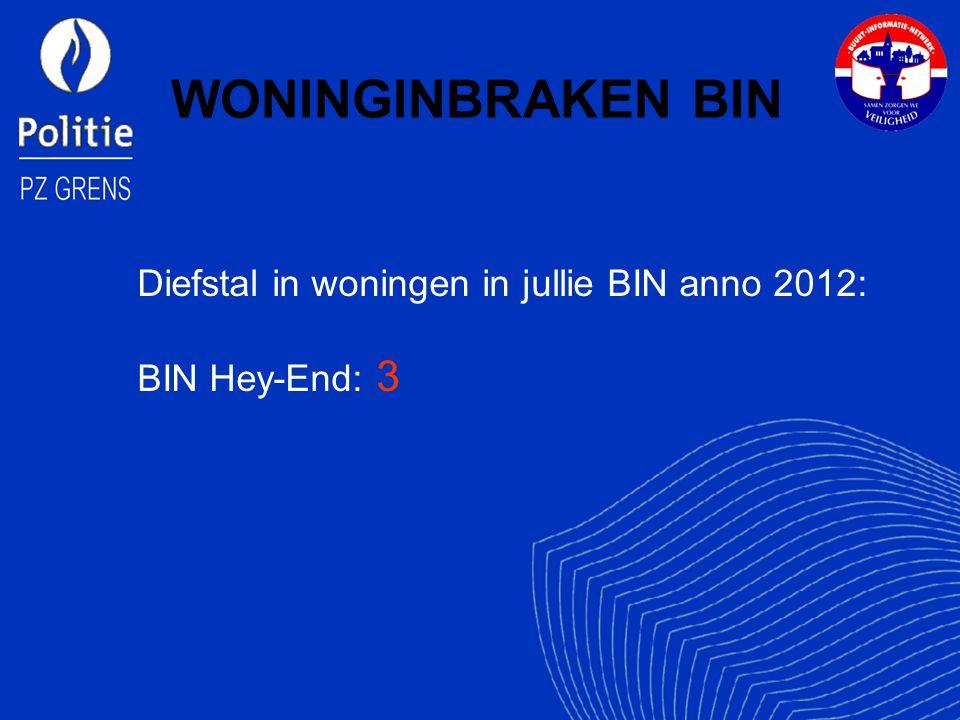 Diefstal in woningen in jullie BIN anno 2012: BIN Hey-End: 3
