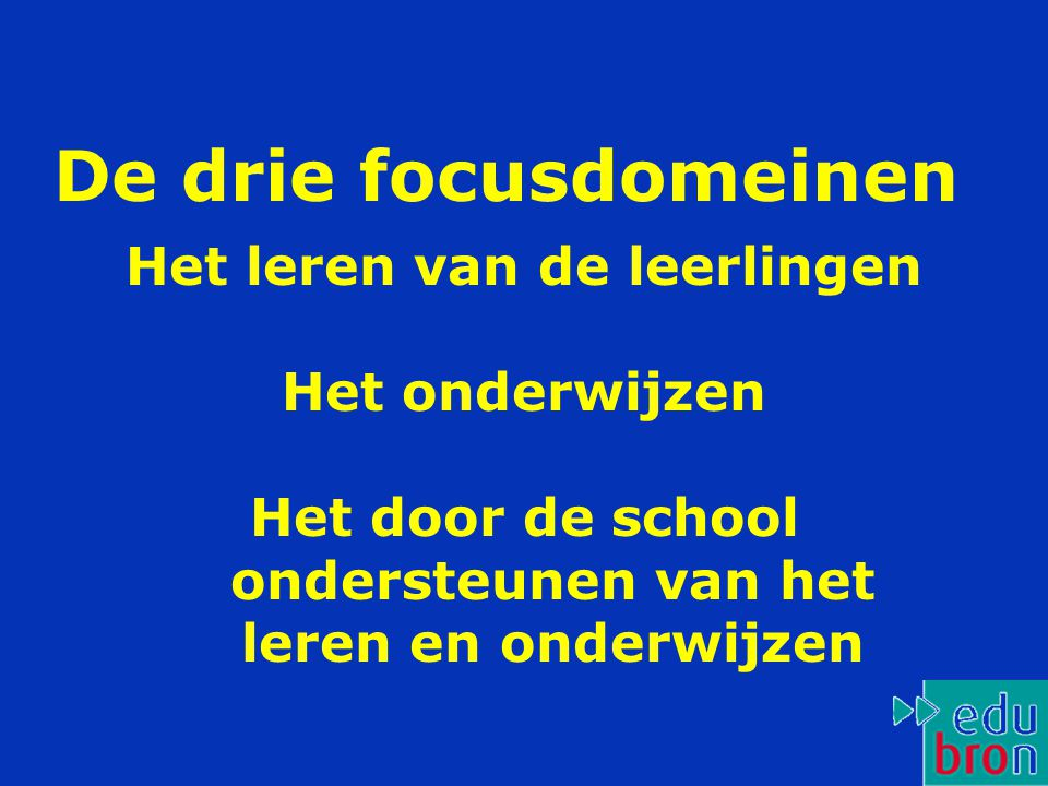 De drie focusdomeinen Het leren van de leerlingen Het onderwijzen Het door de school ondersteunen van het leren en onderwijzen