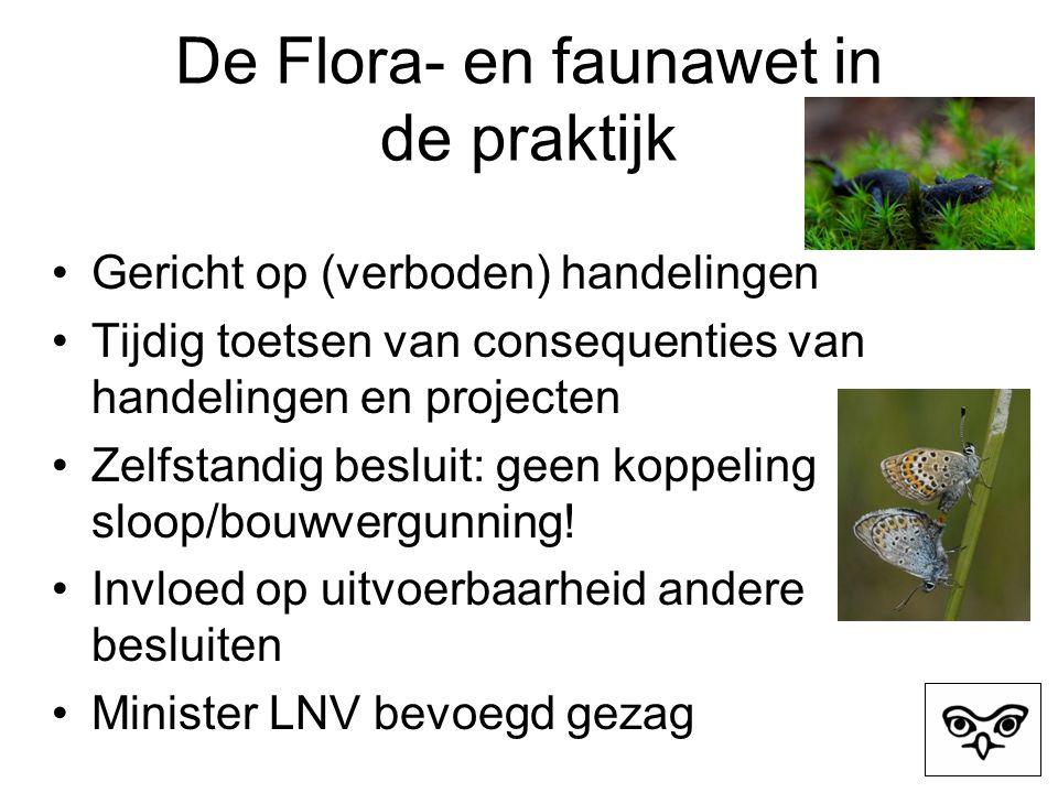 De Flora- en faunawet in de praktijk Gericht op (verboden) handelingen Tijdig toetsen van consequenties van handelingen en projecten Zelfstandig besluit: geen koppeling sloop/bouwvergunning.