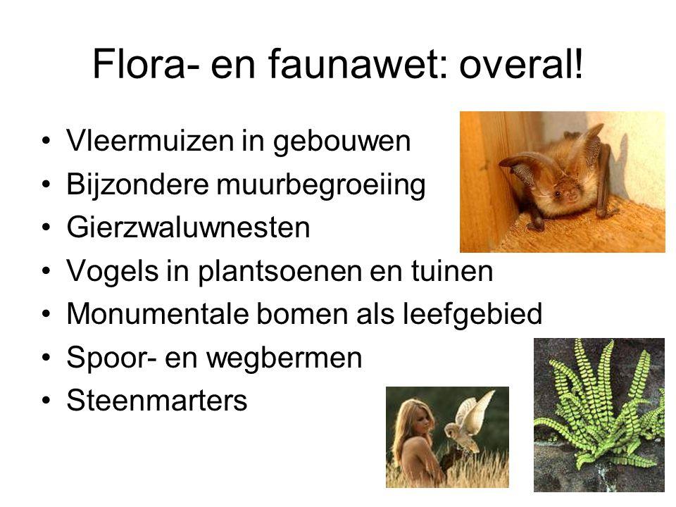 Flora- en faunawet: overal.