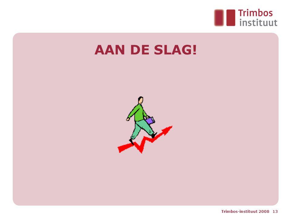 Trimbos-instituut 2008 13 AAN DE SLAG!