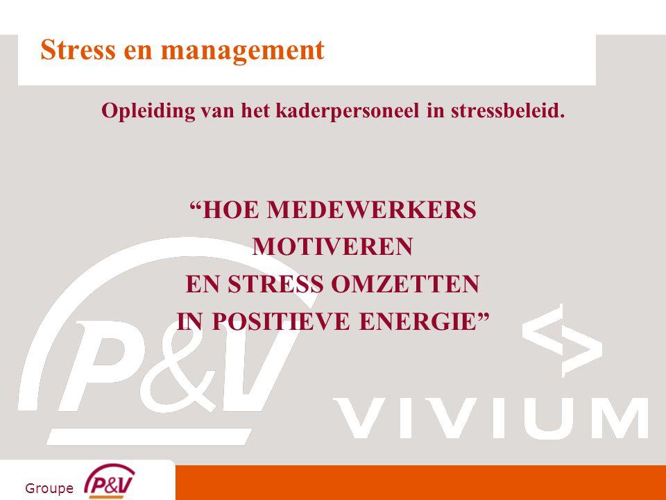 """Groupe Stress en management Opleiding van het kaderpersoneel in stressbeleid. """"HOE MEDEWERKERS MOTIVEREN EN STRESS OMZETTEN IN POSITIEVE ENERGIE"""""""