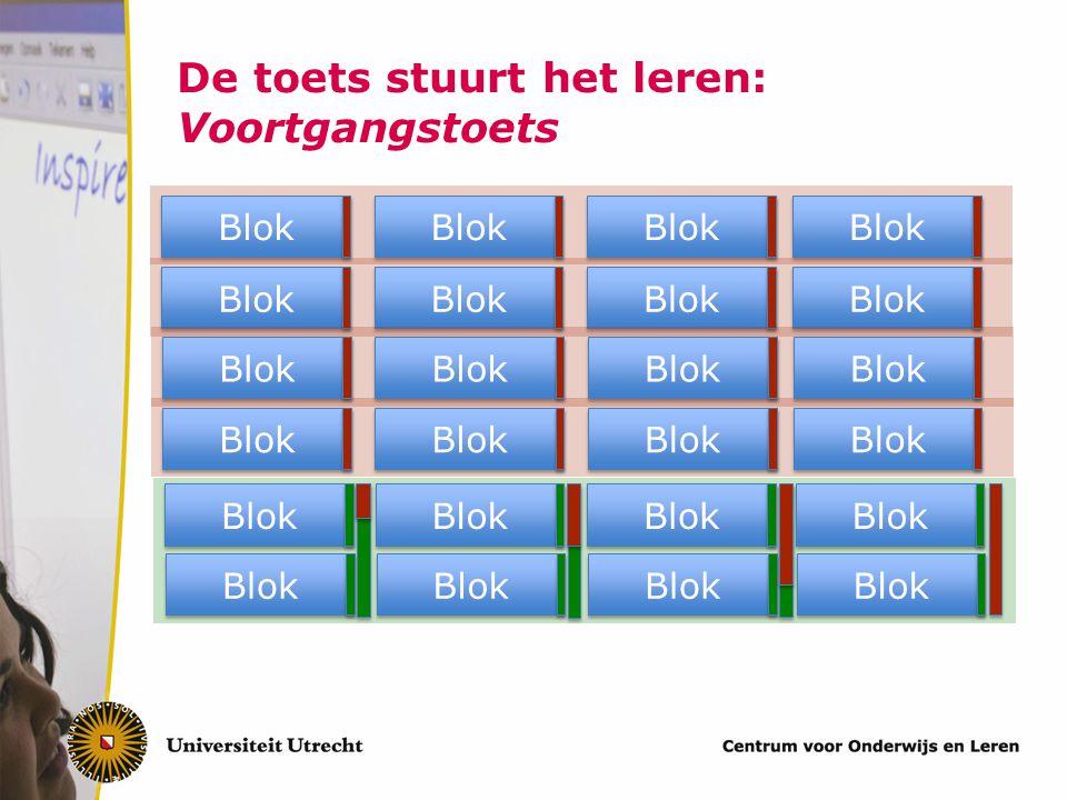 De toets stuurt het leren: Voortgangstoets Blok