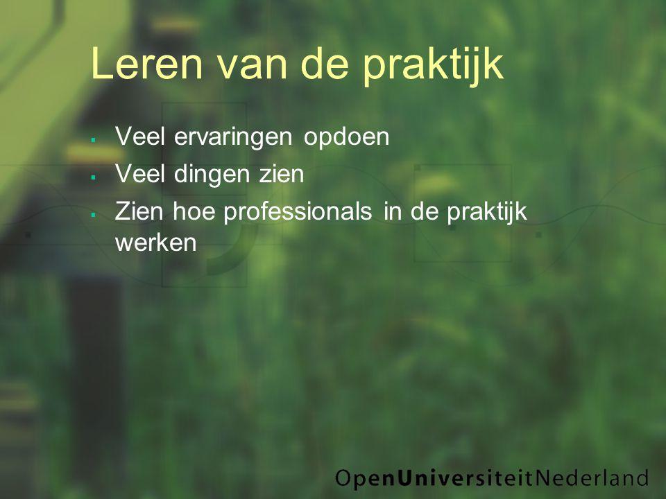 Leren van de praktijk  Veel ervaringen opdoen  Veel dingen zien  Zien hoe professionals in de praktijk werken