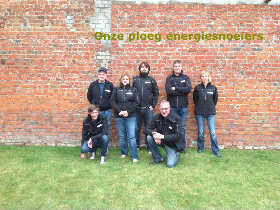 Onze ploeg energiesnoeiers