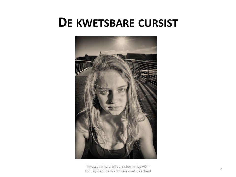 D E KWETSBARE CURSIST