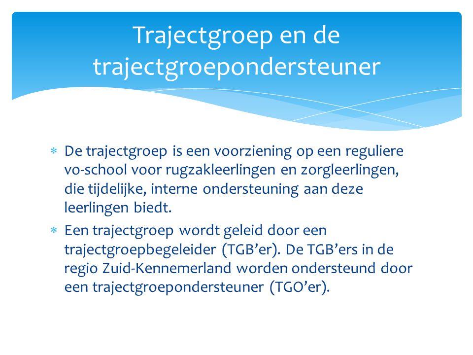  De TGO'er ondersteunt de school bij het opzetten van de trajectgroep.