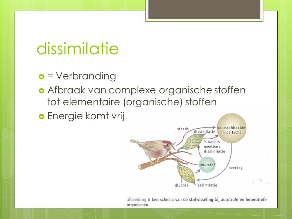 dissimilatie  = Verbranding  Afbraak van complexe organische stoffen tot elementaire (organische) stoffen  Energie komt vrij