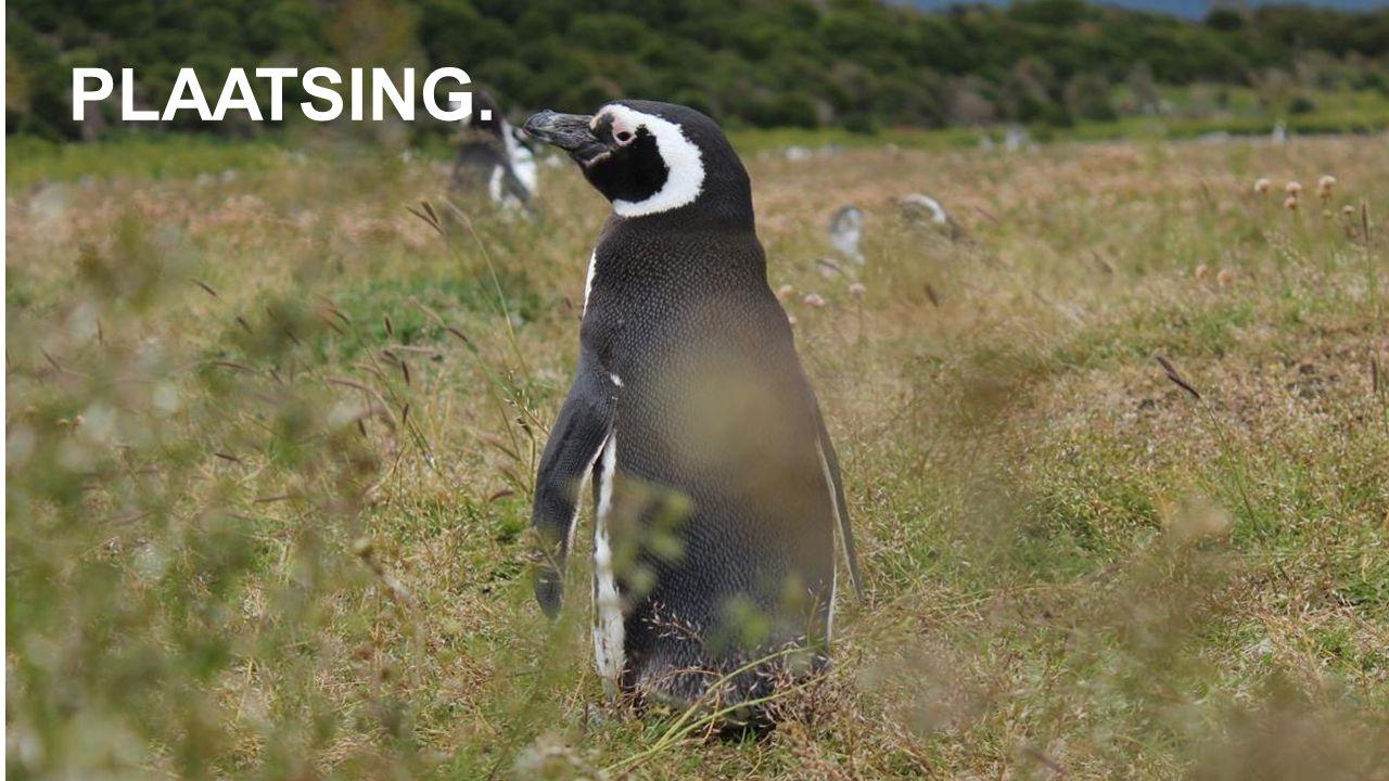 Online marketing vandaag UNIZO – 24 oktober 2013 PLAATSING.
