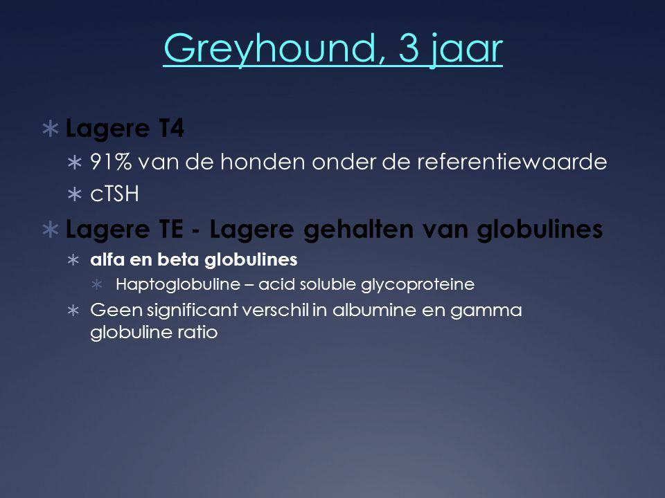 Greyhound, 3 jaar  Lagere T4  91% van de honden onder de referentiewaarde  cTSH  Lagere TE - Lagere gehalten van globulines  alfa en beta globuli