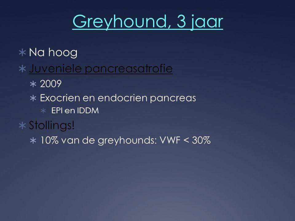 Greyhound, 3 jaar  Na hoog  Juveniele pancreasatrofie  2009  Exocrien en endocrien pancreas  EPI en IDDM  Stollings!  10% van de greyhounds: VW