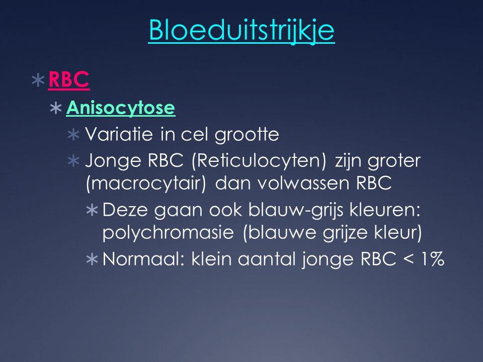 Bloeduitstrijkje  RBC  Anisocytose  Variatie in cel grootte  Jonge RBC (Reticulocyten) zijn groter (macrocytair) dan volwassen RBC  Deze gaan ook
