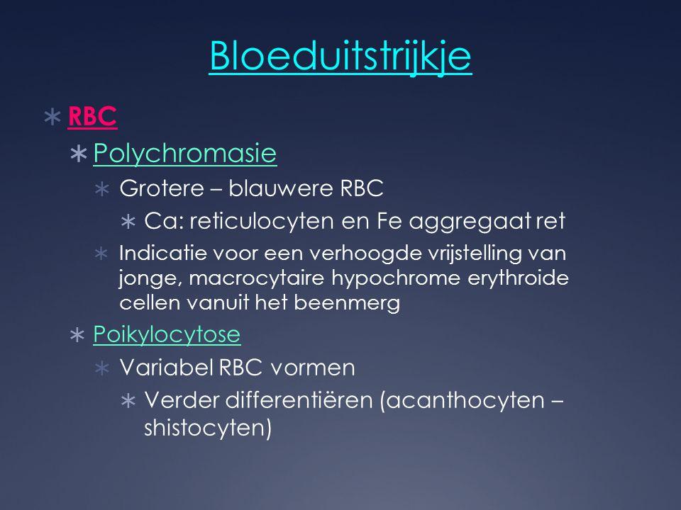 Bloeduitstrijkje  RBC  Polychromasie  Grotere – blauwere RBC  Ca: reticulocyten en Fe aggregaat ret  Indicatie voor een verhoogde vrijstelling va