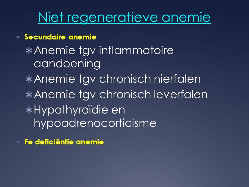 Niet regeneratieve anemie  Secundaire anemie  Anemie tgv inflammatoire aandoening  Anemie tgv chronisch nierfalen  Anemie tgv chronisch leverfalen