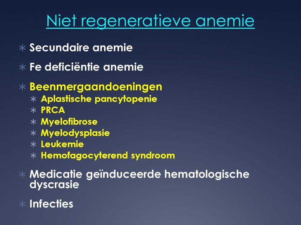 Niet regeneratieve anemie  Secundaire anemie  Fe deficiëntie anemie  Beenmergaandoeningen  Aplastische pancytopenie  PRCA  Myelofibrose  Myelod