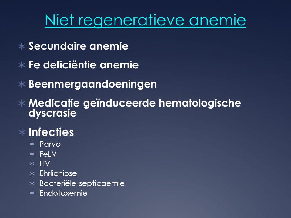Niet regeneratieve anemie  Secundaire anemie  Fe deficiëntie anemie  Beenmergaandoeningen  Medicatie geïnduceerde hematologische dyscrasie  Infec