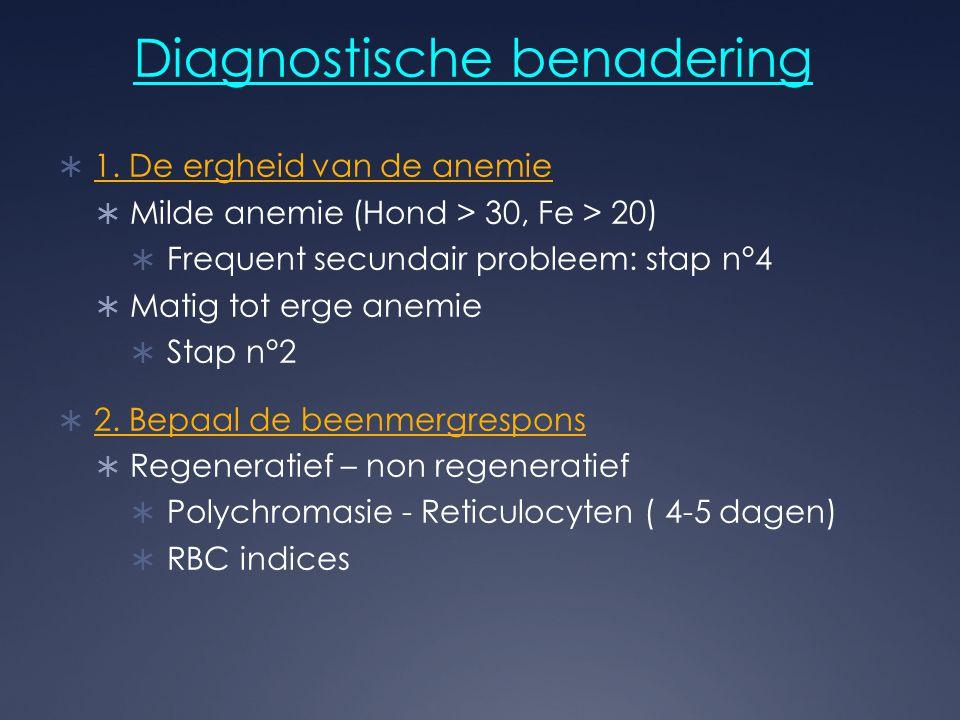 Diagnostische benadering  1. De ergheid van de anemie  Milde anemie (Hond > 30, Fe > 20)  Frequent secundair probleem: stap n°4  Matig tot erge an