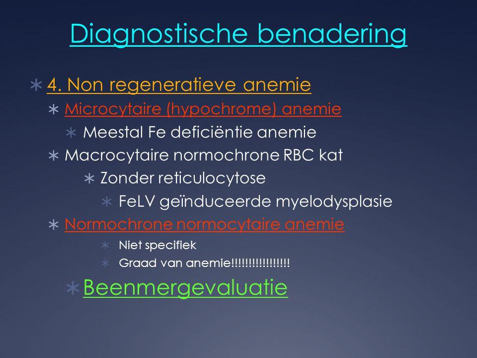 Diagnostische benadering  4. Non regeneratieve anemie  Microcytaire (hypochrome) anemie  Meestal Fe deficiëntie anemie  Macrocytaire normochrone R