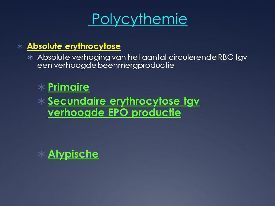 Polycythemie  Absolute erythrocytose  Absolute verhoging van het aantal circulerende RBC tgv een verhoogde beenmergproductie  Primaire  Secundaire