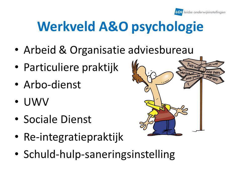 Werkveld A&O psychologie Arbeid & Organisatie adviesbureau Particuliere praktijk Arbo-dienst UWV Sociale Dienst Re-integratiepraktijk Schuld-hulp-sane