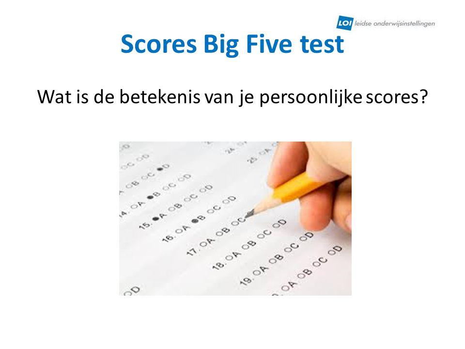 Scores Big Five test Wat is de betekenis van je persoonlijke scores?