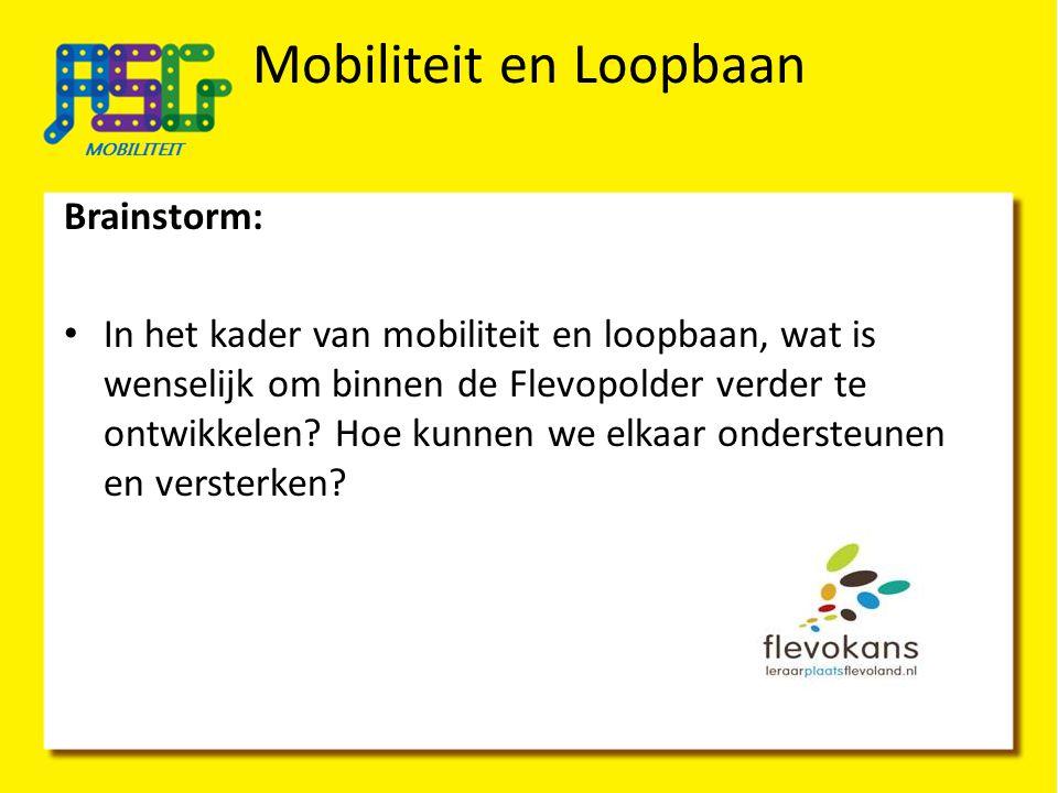 Brainstorm: In het kader van mobiliteit en loopbaan, wat is wenselijk om binnen de Flevopolder verder te ontwikkelen? Hoe kunnen we elkaar ondersteune