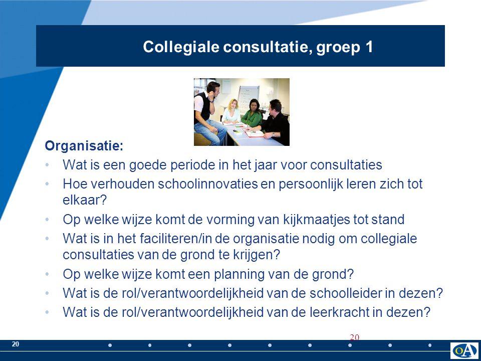 20 Organisatie: Wat is een goede periode in het jaar voor consultaties Hoe verhouden schoolinnovaties en persoonlijk leren zich tot elkaar? Op welke w