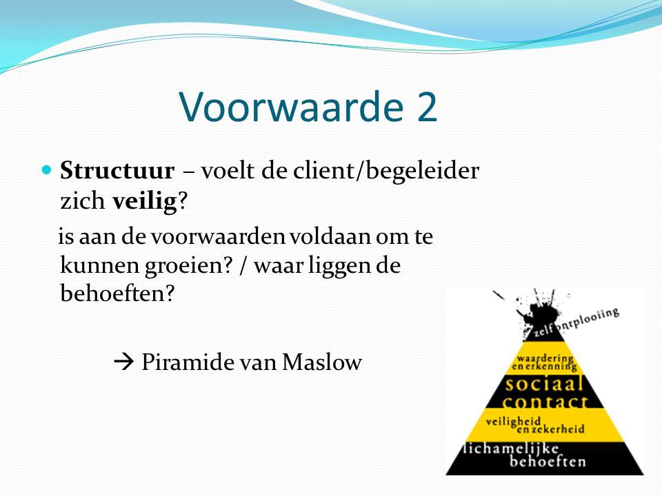 Voorwaarde 2 Structuur – voelt de client/begeleider zich veilig? is aan de voorwaarden voldaan om te kunnen groeien? / waar liggen de behoeften?  Pir