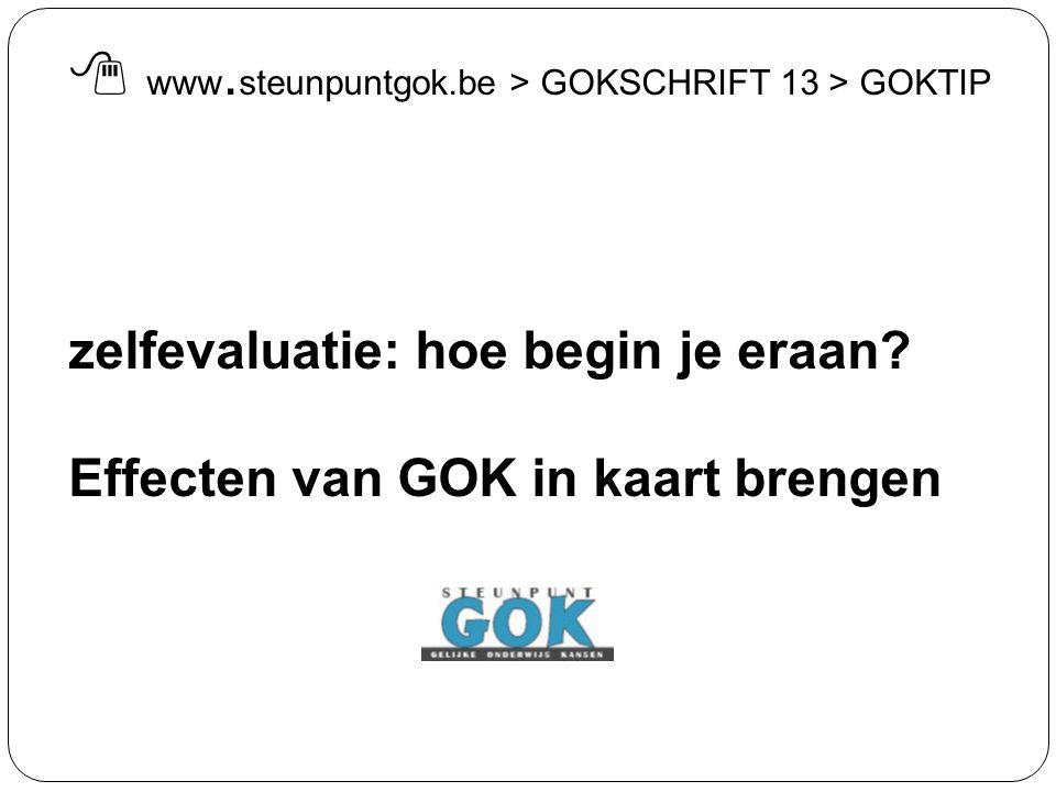 zelfevaluatie: hoe begin je eraan? Effecten van GOK in kaart brengen  www. steunpuntgok.be > GOKSCHRIFT 13 > GOKTIP