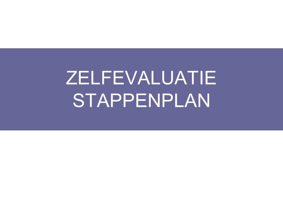 ZELFEVALUATIE STAPPENPLAN Layout Edwin Kindermans