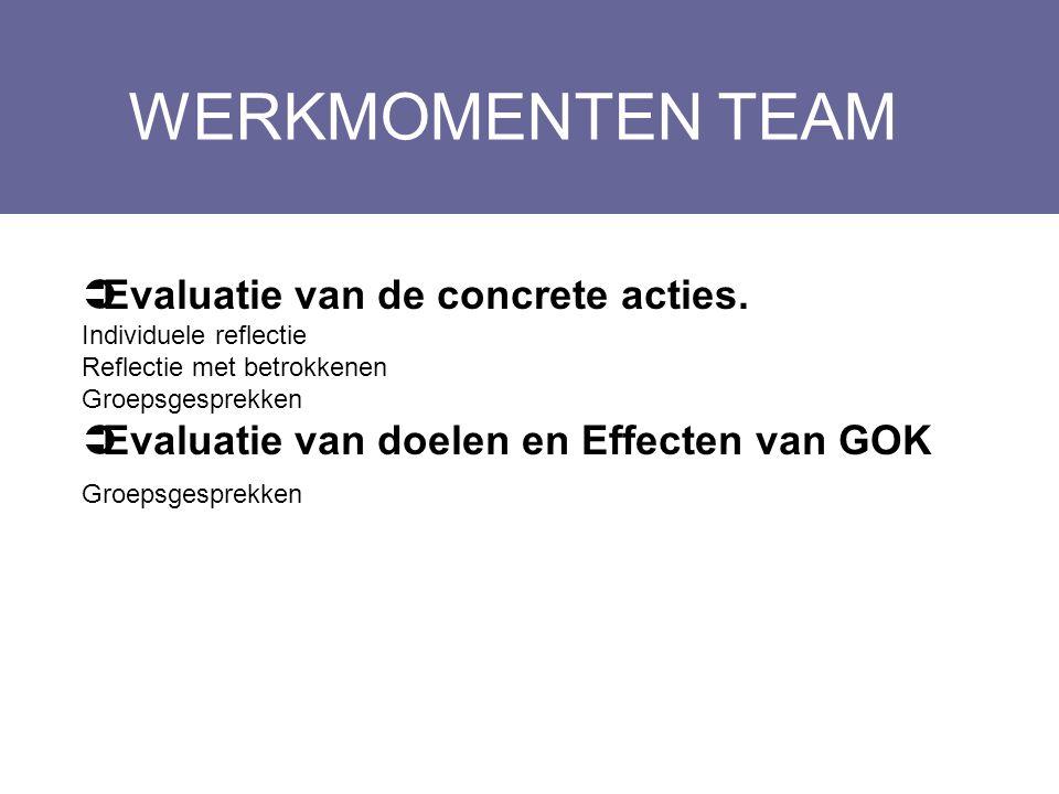 WERKMOMENTEN TEAM Layout Edwin Kindermans  Evaluatie van de concrete acties. Individuele reflectie Reflectie met betrokkenen Groepsgesprekken  Evalu