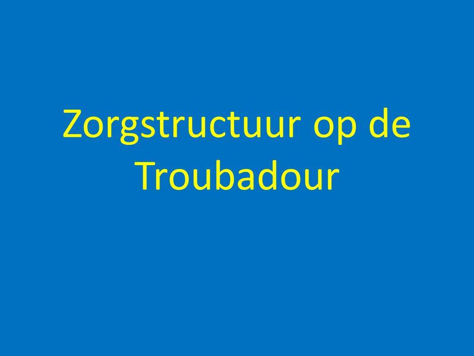 Zorgstructuur op de Troubadour