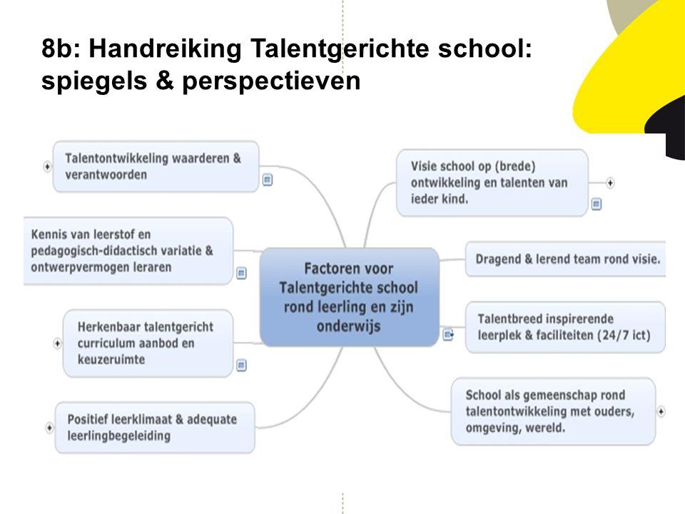 8b: Handreiking Talentgerichte school: spiegels & perspectieven