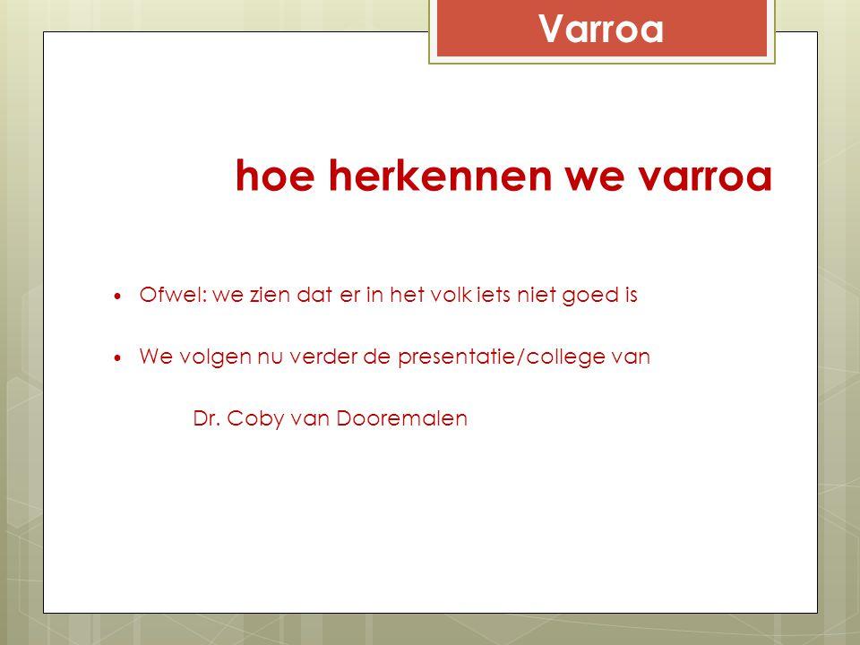 hoe herkennen we varroa Ofwel: we zien dat er in het volk iets niet goed is We volgen nu verder de presentatie/college van Dr. Coby van Dooremalen Var