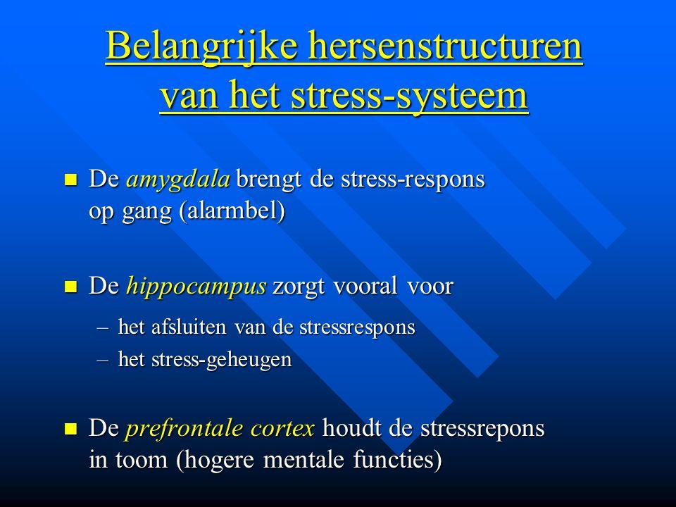 Belangrijke hersenstructuren van het stress-systeem De amygdala brengt de stress-respons op gang (alarmbel) De amygdala brengt de stress-respons op ga