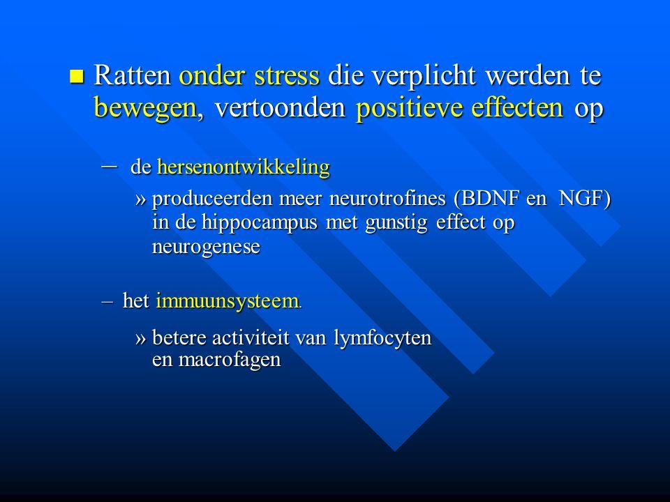 Ratten onder stress die verplicht werden te bewegen, vertoonden positieve effecten op Ratten onder stress die verplicht werden te bewegen, vertoonden