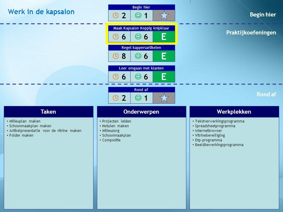 Milieuplan maken Schoonmaakplan maken Artikelpresentatie voor de vitrine maken Folder maken Projecten leiden Notulen maken Milieuzorg Schoonmaakplan C