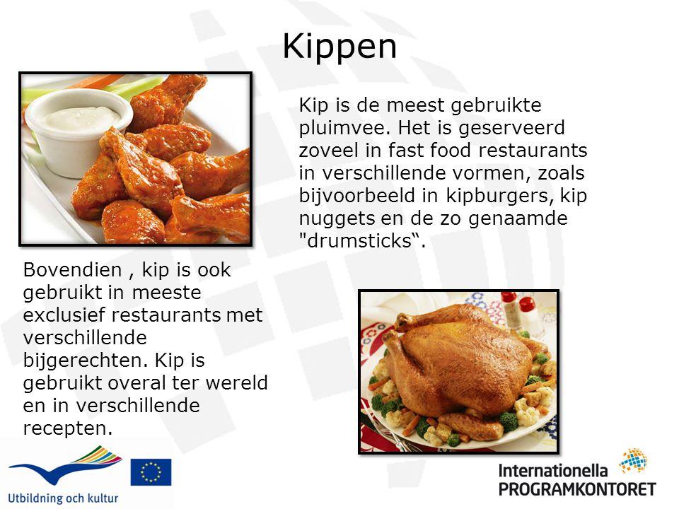 Kippen Kip is de meest gebruikte pluimvee. Het is geserveerd zoveel in fast food restaurants in verschillende vormen, zoals bijvoorbeeld in kipburgers