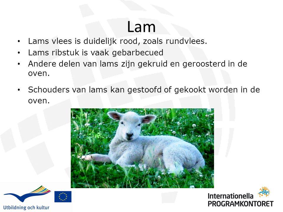 Lam Lams vlees is duidelijk rood, zoals rundvlees. Lams ribstuk is vaak gebarbecued Andere delen van lams zijn gekruid en geroosterd in de oven. Schou