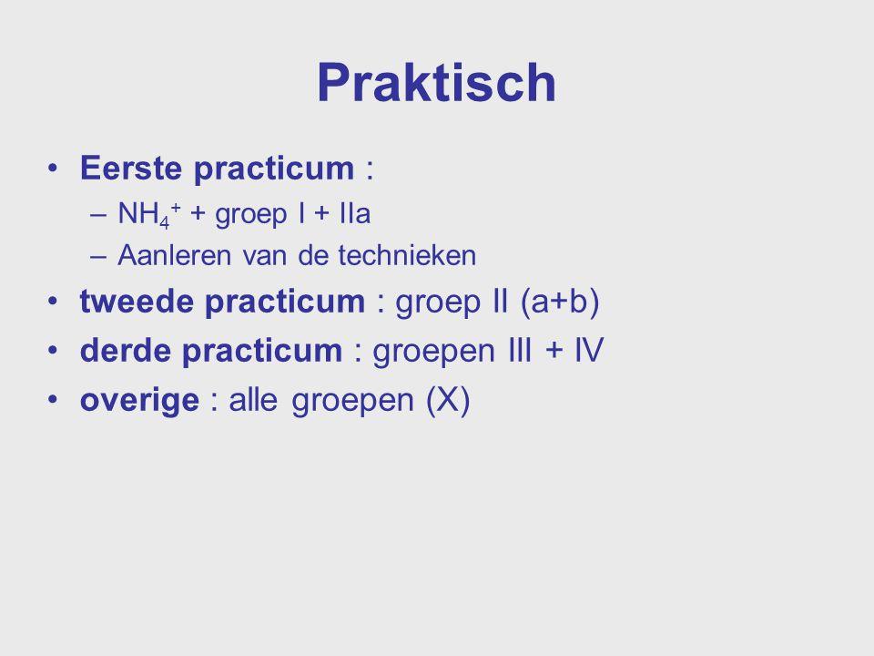 Praktisch Eerste practicum : –NH 4 + + groep I + IIa –Aanleren van de technieken tweede practicum : groep II (a+b) derde practicum : groepen III + IV
