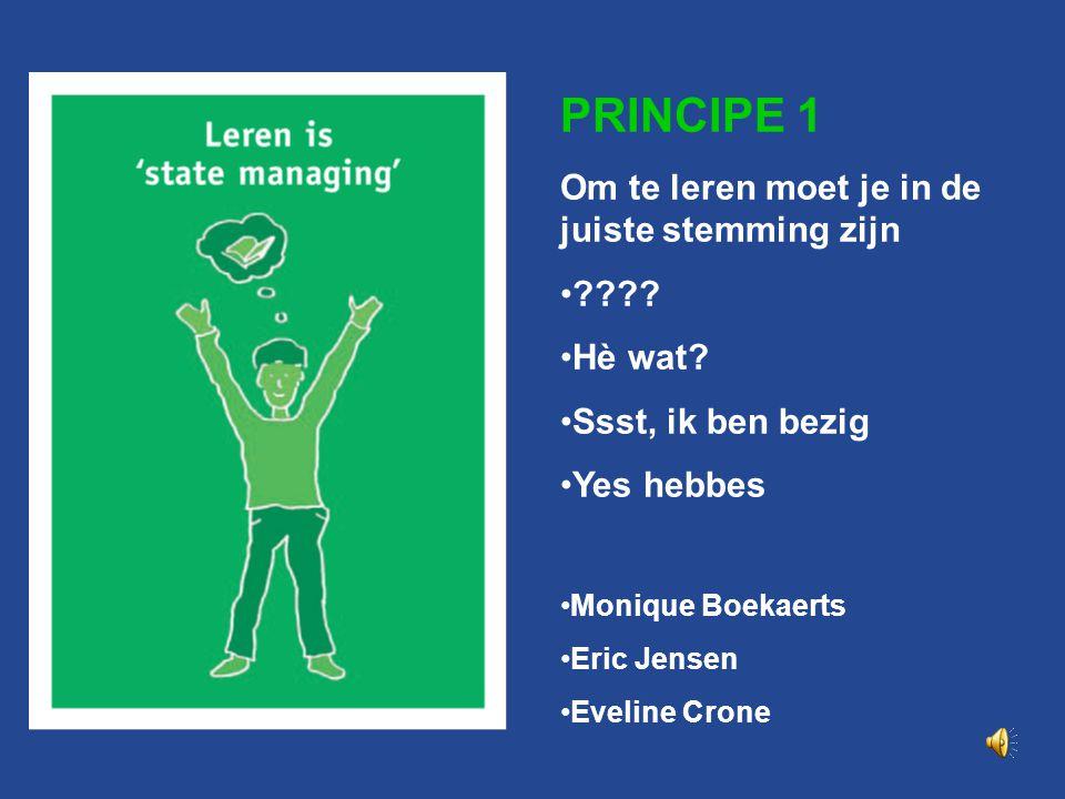 Principe 1 PRINCIPE 1 Om te leren moet je in de juiste stemming zijn ???.