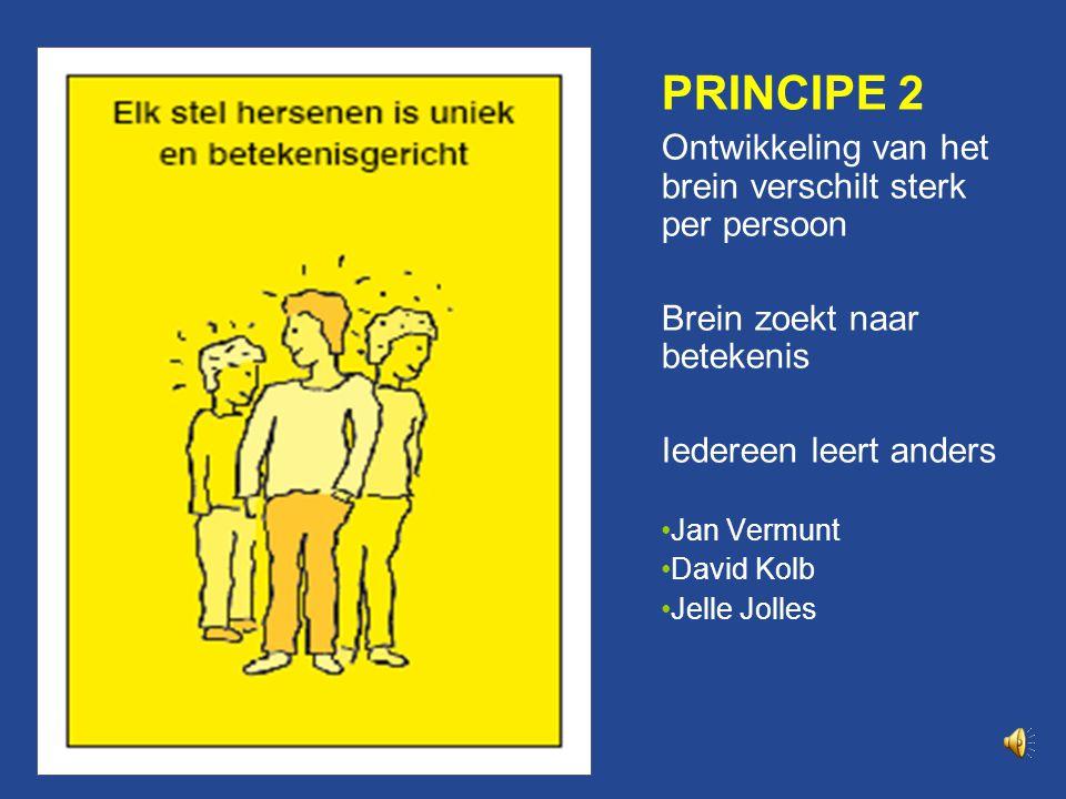 Principe 2 PRINCIPE 2 Ontwikkeling van het brein verschilt sterk per persoon Brein zoekt naar betekenis Iedereen leert anders Jan Vermunt David Kolb Jelle Jolles
