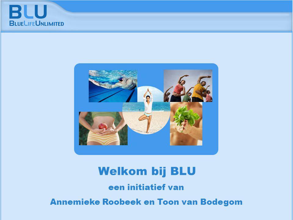 Amsterdam 9 september 2005 BLU Vision Table een initiatief van Annemieke Roobeek en Toon van Bodegom Welkom bij BLU