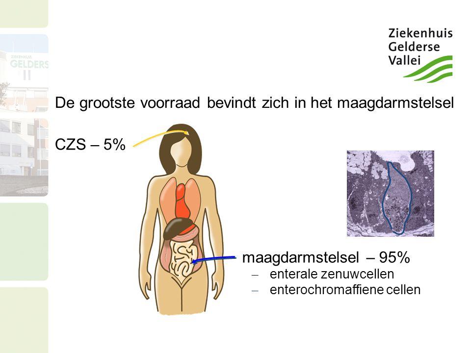 CZS – 5% maagdarmstelsel – 95% – enterale zenuwcellen – enterochromaffiene cellen De grootste voorraad bevindt zich in het maagdarmstelsel