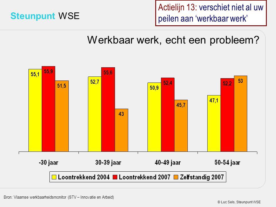 © Luc Sels, Steunpunt WSE Steunpunt WSE Werkbaar werk, echt een probleem? Bron: Vlaamse werkbaarheidsmonitor (STV – Innovatie en Arbeid) Actielijn 13: