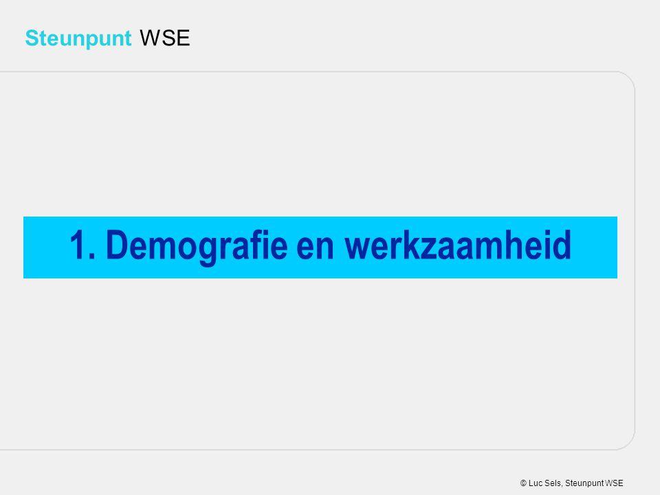 © Luc Sels, Steunpunt WSE Steunpunt WSE 1. Demografie en werkzaamheid