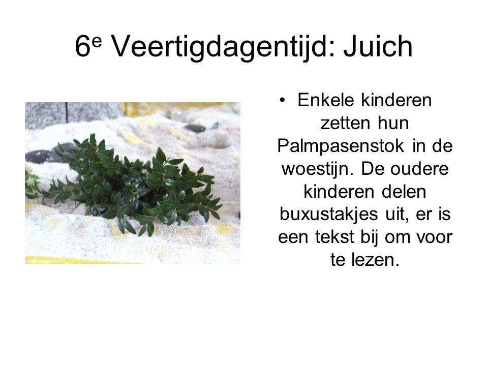 6 e Veertigdagentijd: Juich Enkele kinderen zetten hun Palmpasenstok in de woestijn. De oudere kinderen delen buxustakjes uit, er is een tekst bij om