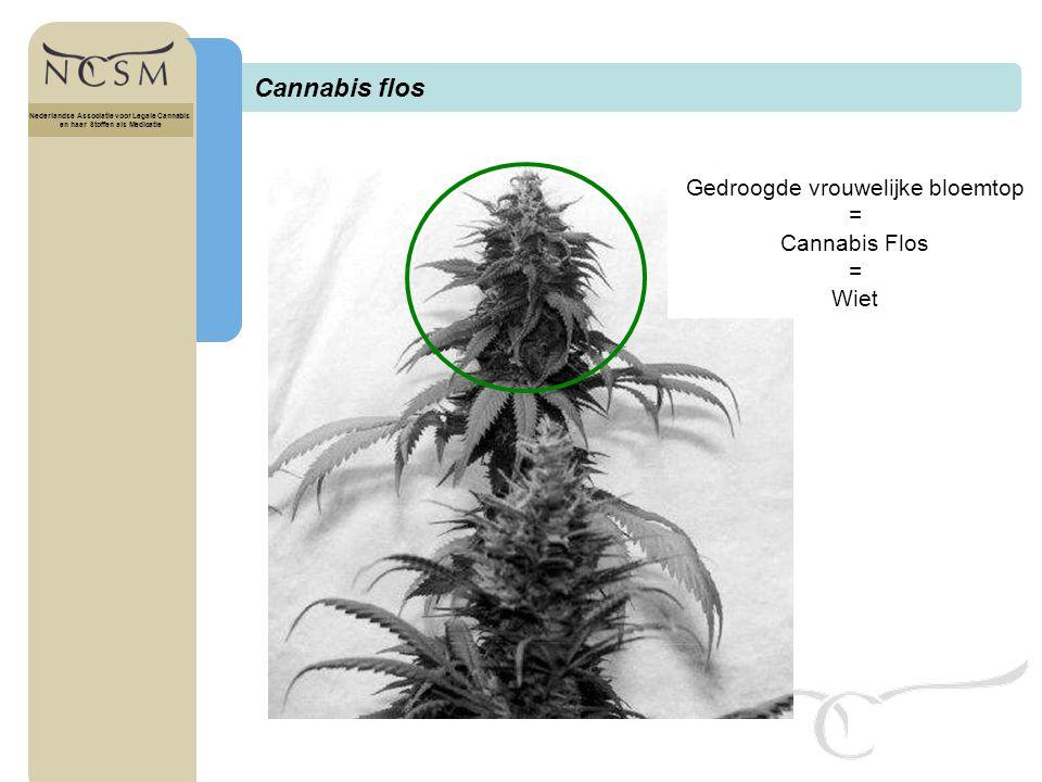 Titel Nederlandse Associatie voor Legale Cannabis en haar Stoffen als Medicatie Actieve stoffen uit een klierhaar Nederlandse Associatie voor Legale Cannabis en haar Stoffen als Medicatie
